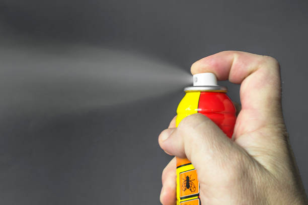 Aerosol for the control of insects. stock photo