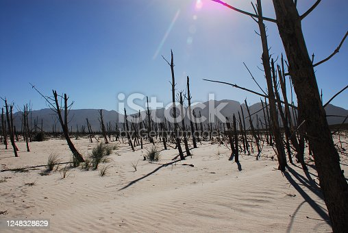 istock Africa- A Stark View of the Waterless Cape Town Reservoir 1248328629