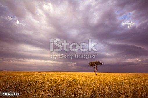 istock Africa landscape 510462190