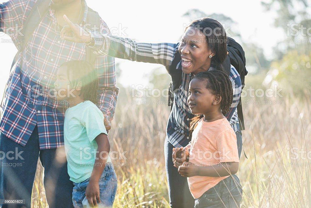 African American family exploring nature royaltyfri bildbanksbilder