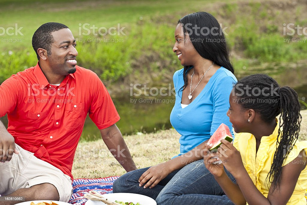 African American Family Having Picnic at a Park stock photo