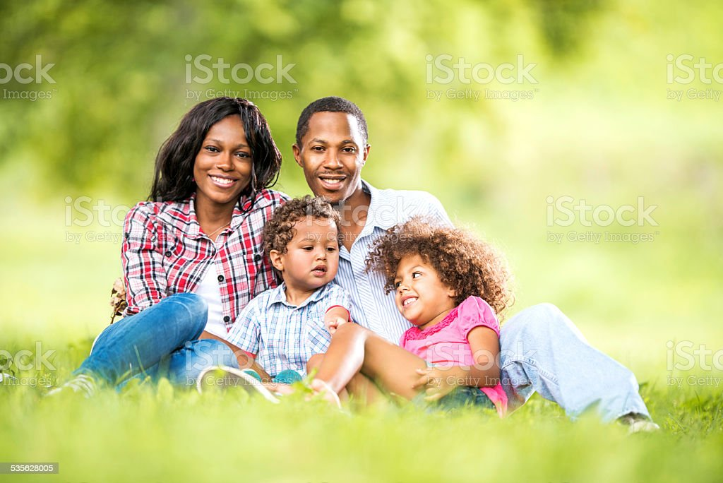 African American family in grass. stock photo