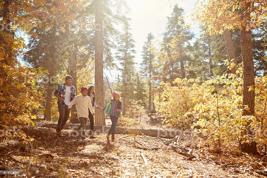 African American Family Walking Through Fall Woodland stock photo