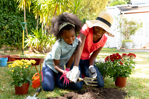 Happy African American girl and her mother in the garden, planting flowers. Social distancing and self isolation in quarantine lockdown, spending quality time at home together.