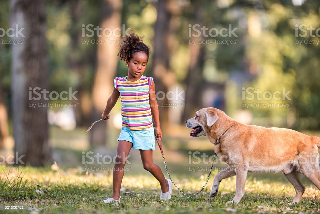 African American girl walking with her dog in the park. foto stock royalty-free