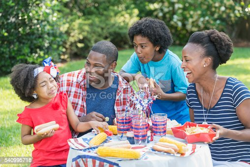 1091098220istockphoto African American mixed race family at July 4th picnic 540995718