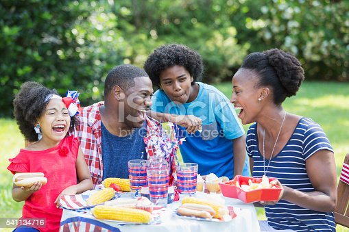 1091098220istockphoto African American mixed race family at July 4th picnic 541134716