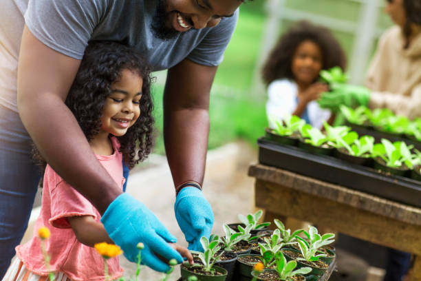 African American parents teaching children to take care of plants at plant nursery stock photo