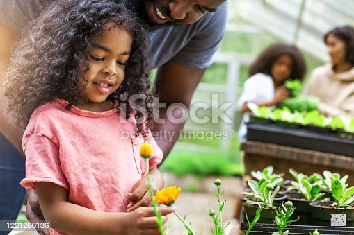 African American parents teaching children to take care of plants at plant nursery