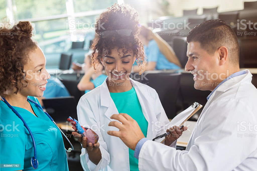 African American pre-med students discuss human heart with professor stock photo