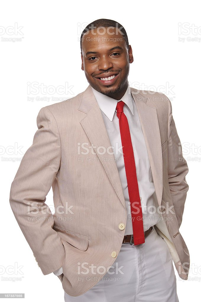 African American Professionals Series #2 royalty-free stock photo