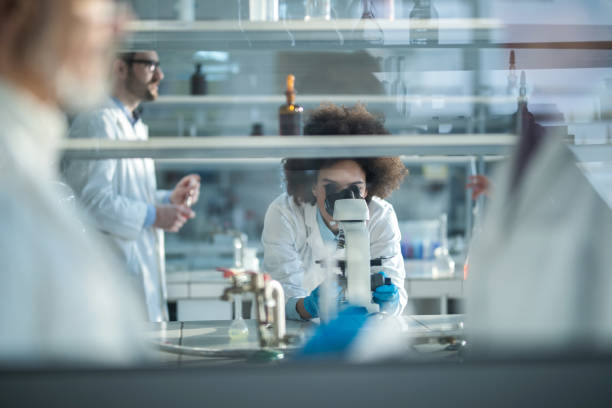 african american scientist looking through microscope while working in laboratory with colleagues. - biochemistry stock photos and pictures