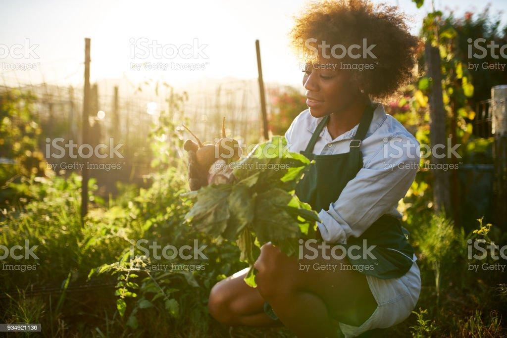 커뮤니티 가든에 아프리카계 미국인 여자 - 로열티 프리 검사-보기 스톡 사진
