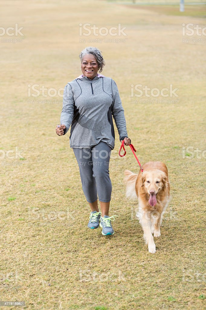 African American woman walking dog stock photo