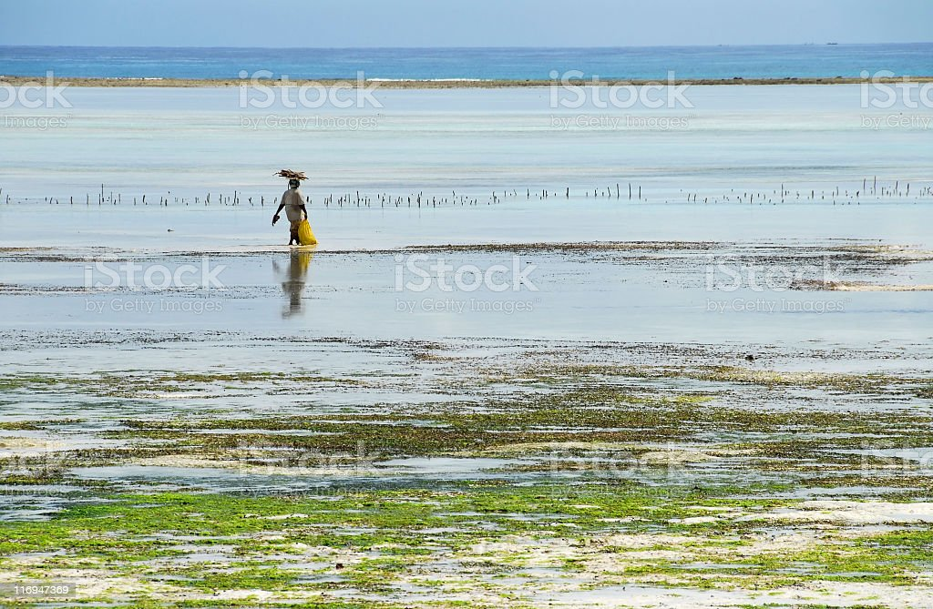 African beach at low tide stock photo