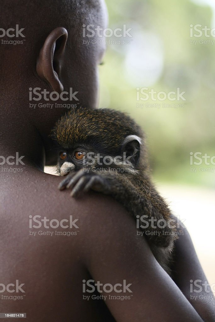 African Boy with Monkey stock photo