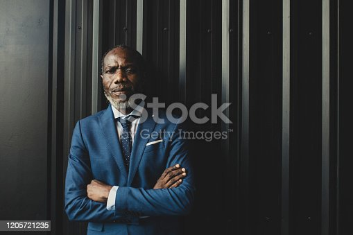 Portrait of handsome elegant African man wearing suit and tie and looking at camera.