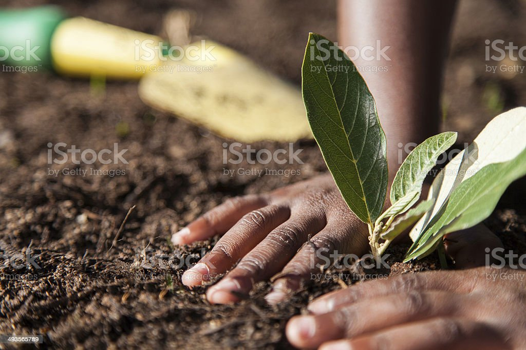African childs hand on soil stock photo