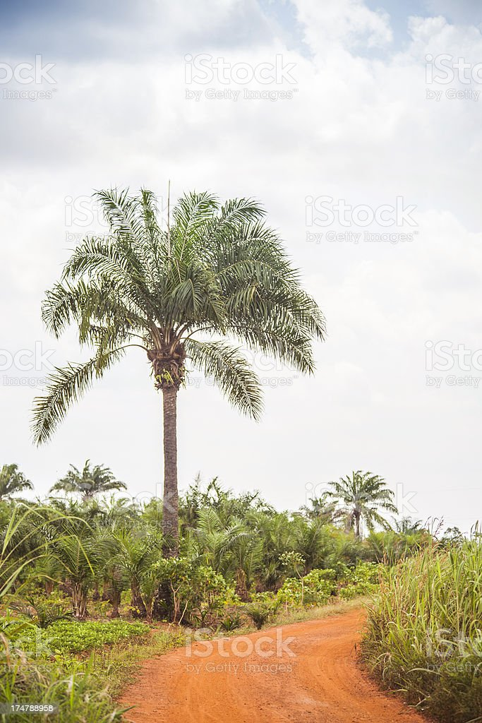 African country road. royalty-free stock photo