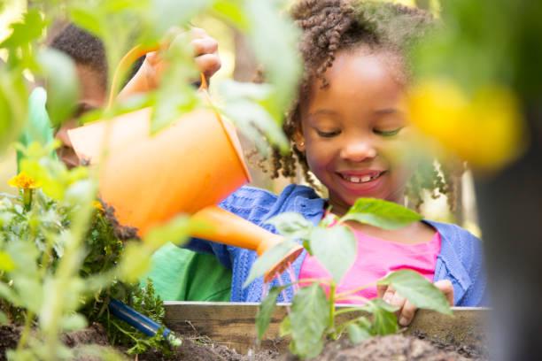 非洲人後裔兒童春季戶外園藝。 - 耕種環境 個照片及圖片檔