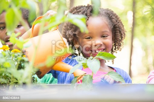 African Descent Children Gardening Outdoors In Spring Stock Photo & More Pictures of 6-7 Years