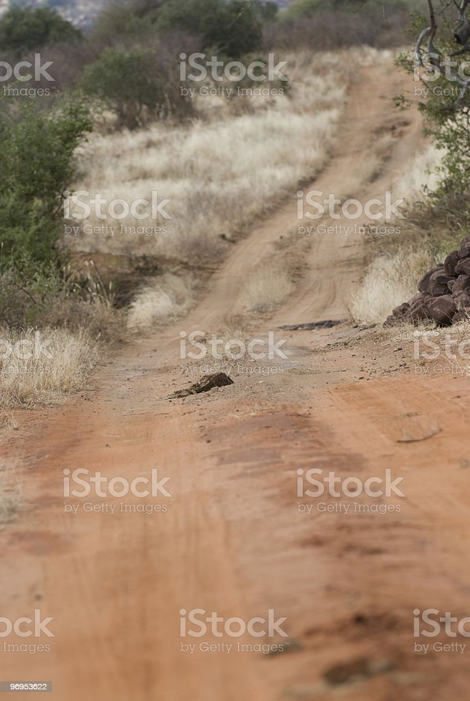 African Dirt Road, East Tsavo, Kenya royalty-free stock photo