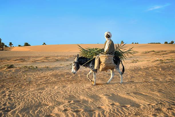 African farm worker foto