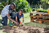 An African father and son do some gardening together in Cape Town, Western Cape, South Africa.