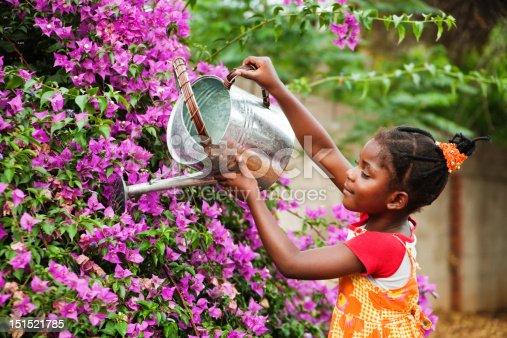 istock african gardener 151521785