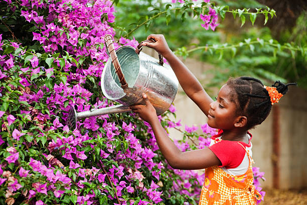 african gardener - watering stock pictures, royalty-free photos & images