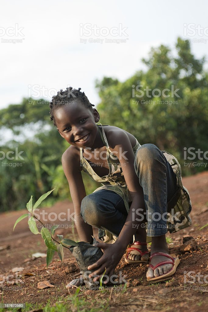 African girl holds mango tree stock photo
