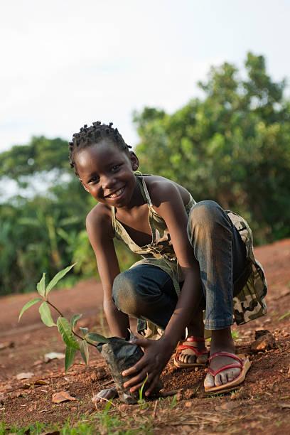 African girl holds mango tree stock photo
