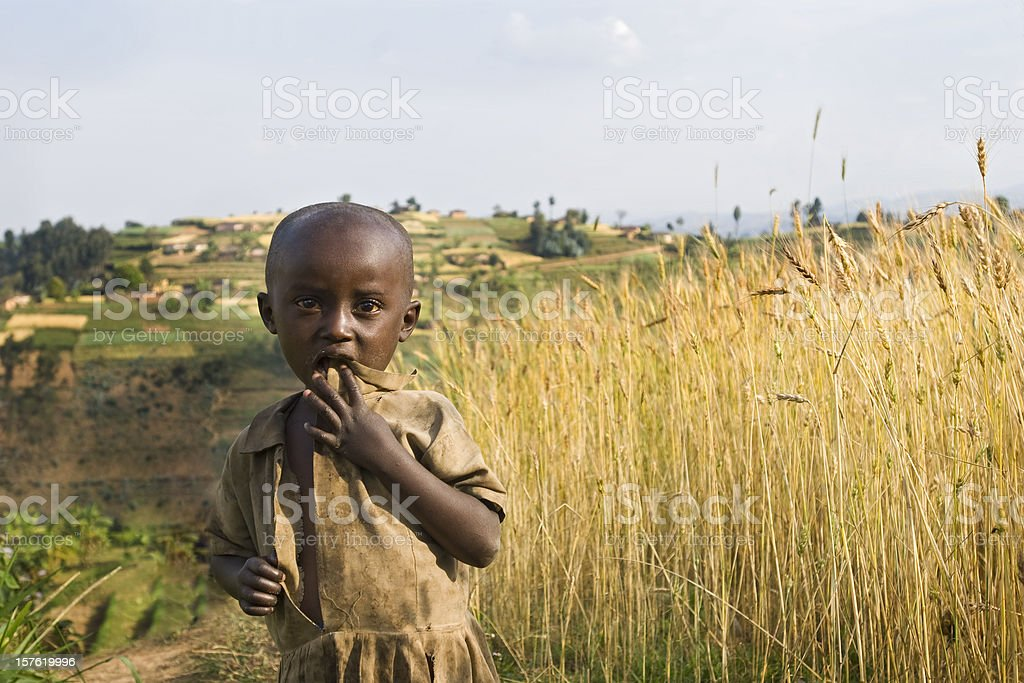 African girl in the fields stock photo