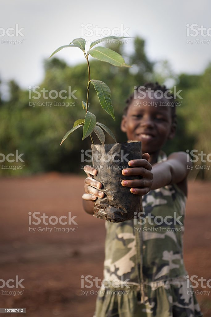 African girl with mango tree stock photo