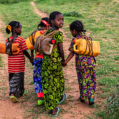 African girls from Borana tribe carrying water to the village, African women and children often walk long distances to bring back jugs of water that they carry on their back. The Borana Oromo are a pastoralist tribe living in southern Ethiopia and northern Kenya