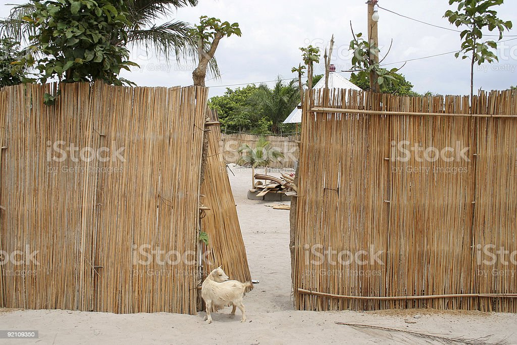 african home stock photo