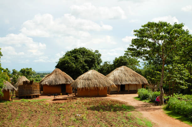african huts - zambia - village stock pictures, royalty-free photos & images