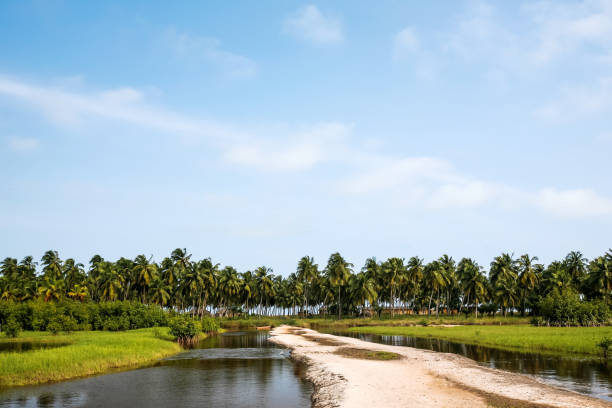 African lagoon landscape - Benin stock photo