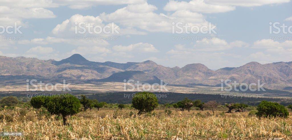 African landscape. Omo Valley. Ethiopia. stock photo