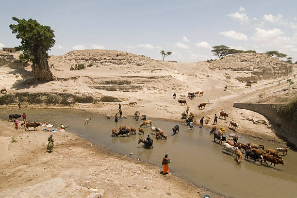 African life at the river foto