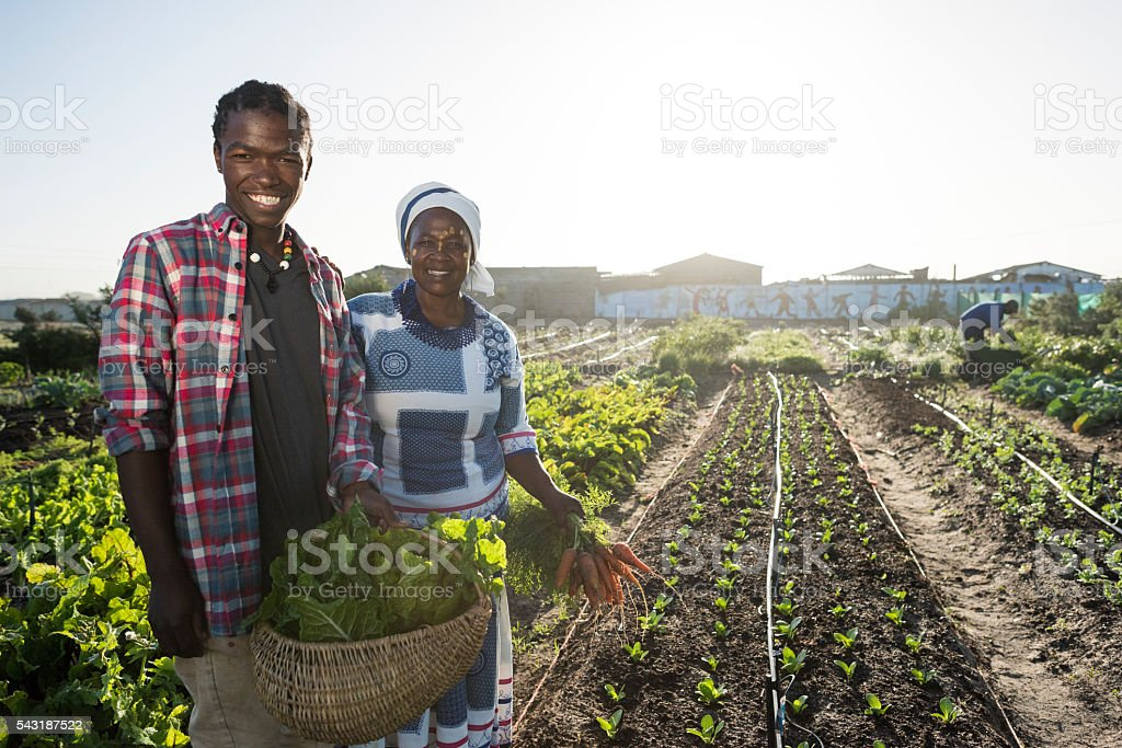 African male and female smiling in garden stock photo