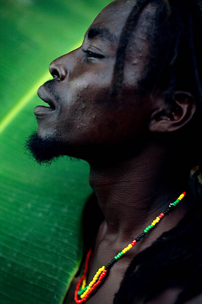 african man - reggae stok fotoğraflar ve resimler