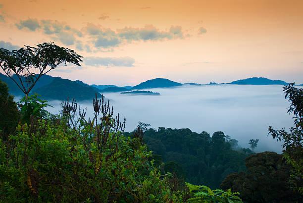 an overview of rwanda