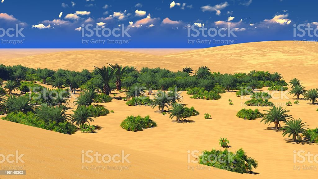 African Oasis On Sahara Stock Photo Download Image Now Istock