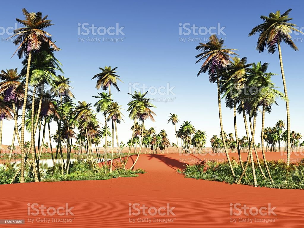 African Oasis Stock Photo Download Image Now Istock