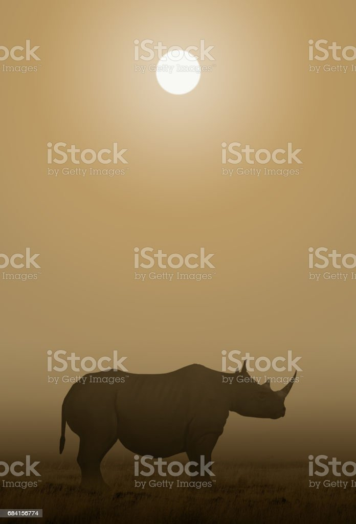 African Rhino Sawanna foto stock royalty-free