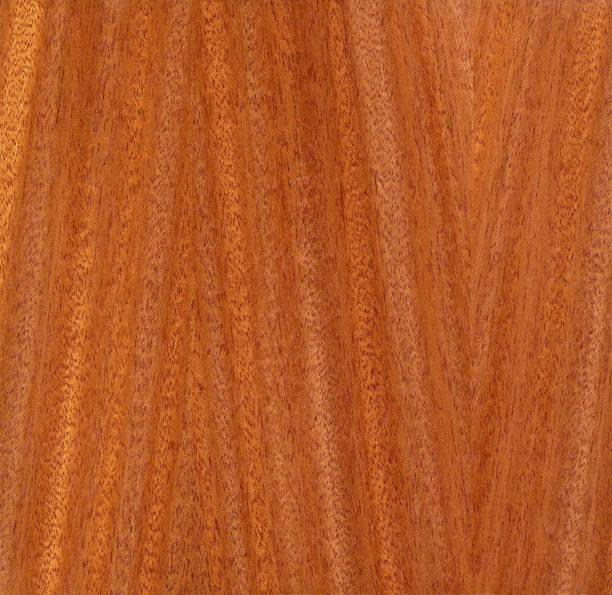 African ribbon mahogany veneer, Khaya ivorensis stock photo