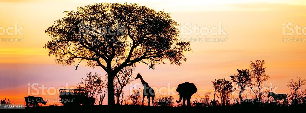 African Safari Silhouette Banner stock photo
