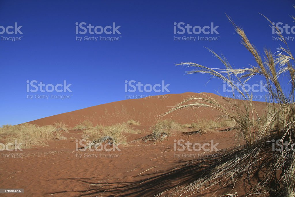 African sand dun with bright blue sky stock photo