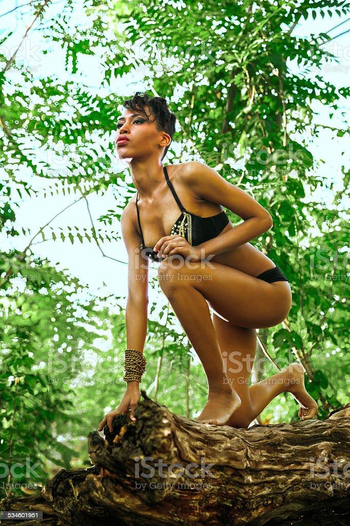Mulher africana sexy Amazônia em madeira na floresta - foto de acervo